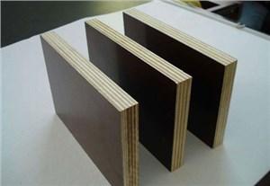 Building template-MU JIAO