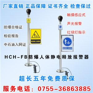 HCH-FB人体静电释放报警器