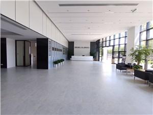 张江商务中心|张江国创中心,办公设备齐全,为企业提供拎包入驻的办公条件