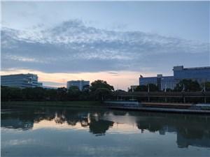 张江集电港16