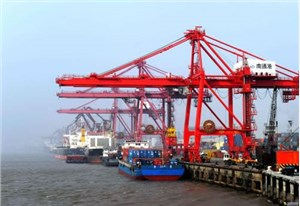 如何选择木材代理报关公司?上海木材进口报关哪家好?