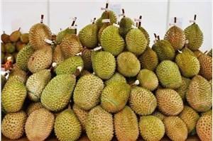 泰国水果进口报关清关公司哪家好