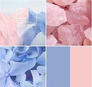 粉蓝丝带是什么?有什么产品?