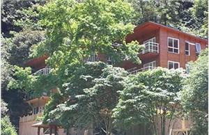 防腐木屋和木结构为农家乐生态游添精彩