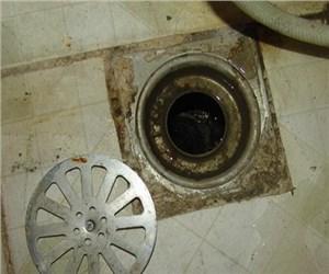 卫生间和厨房下水道地漏有臭味怎么办?