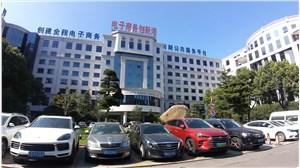 唐镇电子商务创新港 张江银行卡产业园区 涛飞国际广场