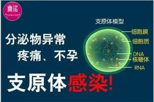 支原体感染可以用抑菌凝胶调理吗?