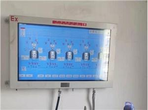 矿用本安型显示器,XH12矿用本安型显示器