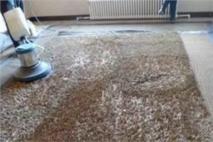 家用地毯如何清洁?具体清洁方法有哪些?