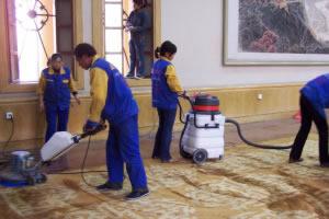 家用地毯污渍清洁方法盘点