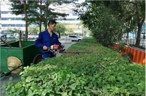 北京保洁公司的经营范围及保洁的服务标准
